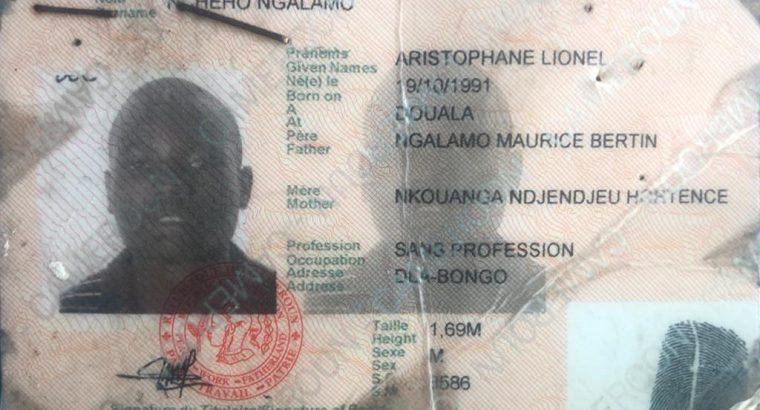 NCHEHO NGALAMO ARISTOPHANE LIONEL
